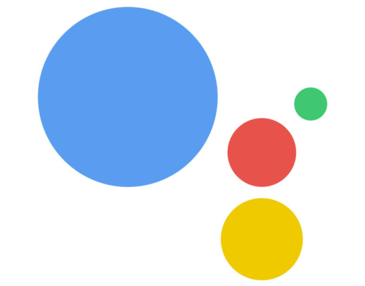 Google Search / Assistant / Feed